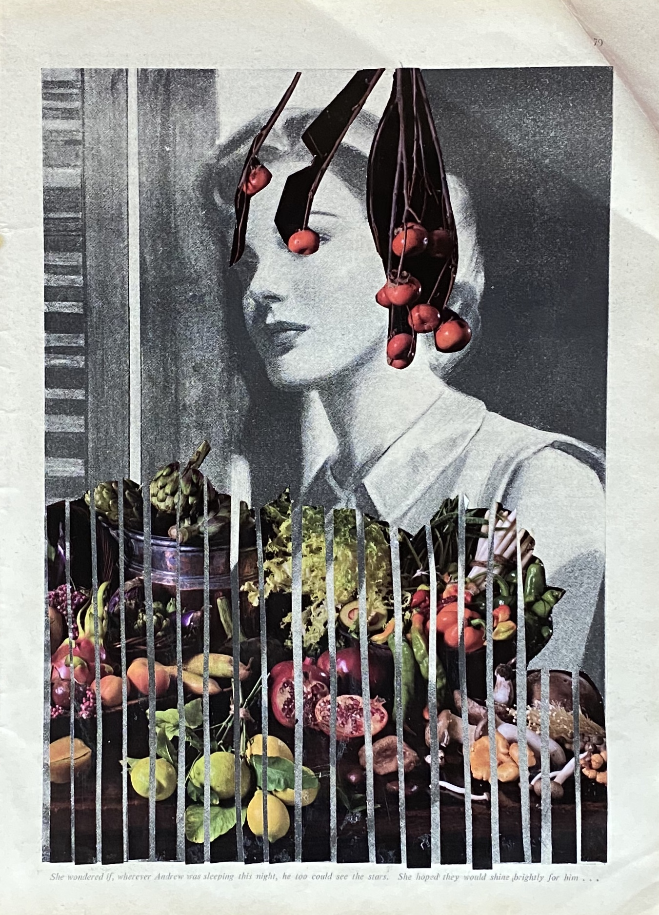 The Thin Veil ..analogue collage 30 x 35cm