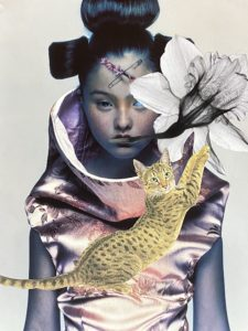 Cat Hypnosis Lesson #1 ..analogue collage 30 x 35cm