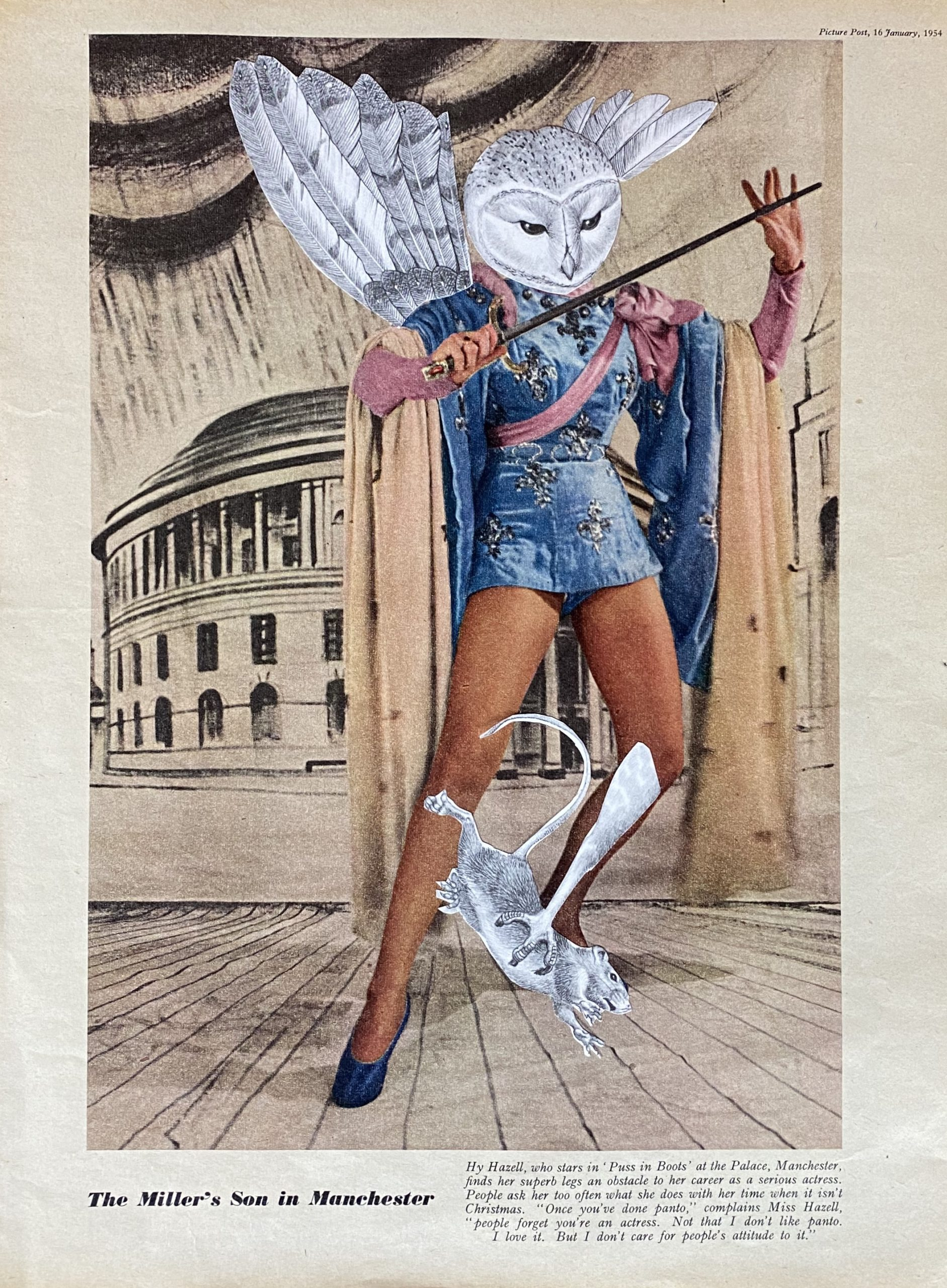 Predator #1 ..analogue collage 30 x 40cm